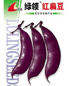 扁豆,扁豆种子专题页面_种子网-天鸿种子网,种子产品 ...